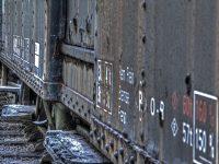 Verlassene Waggons - Abandoned Trains