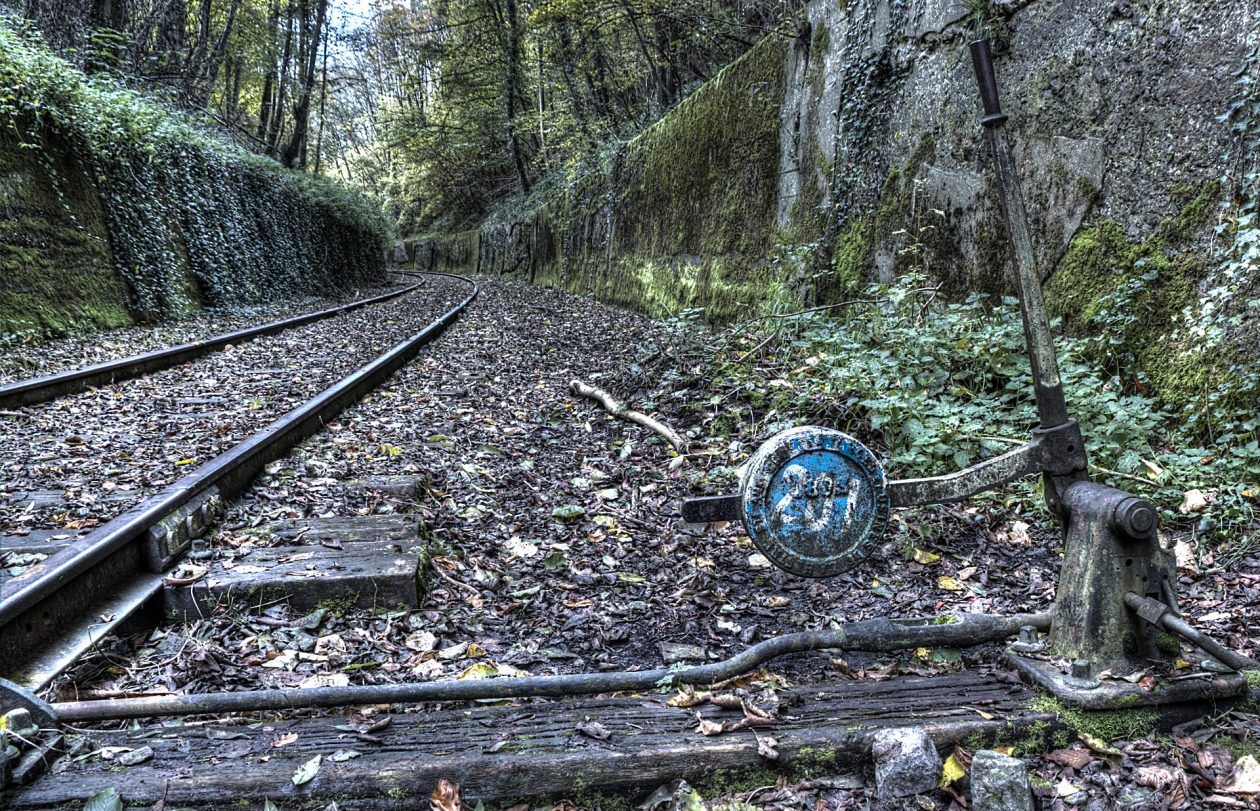 Abandoned Trains
