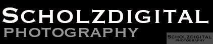 cropped-Scholzdigital_new.jpg
