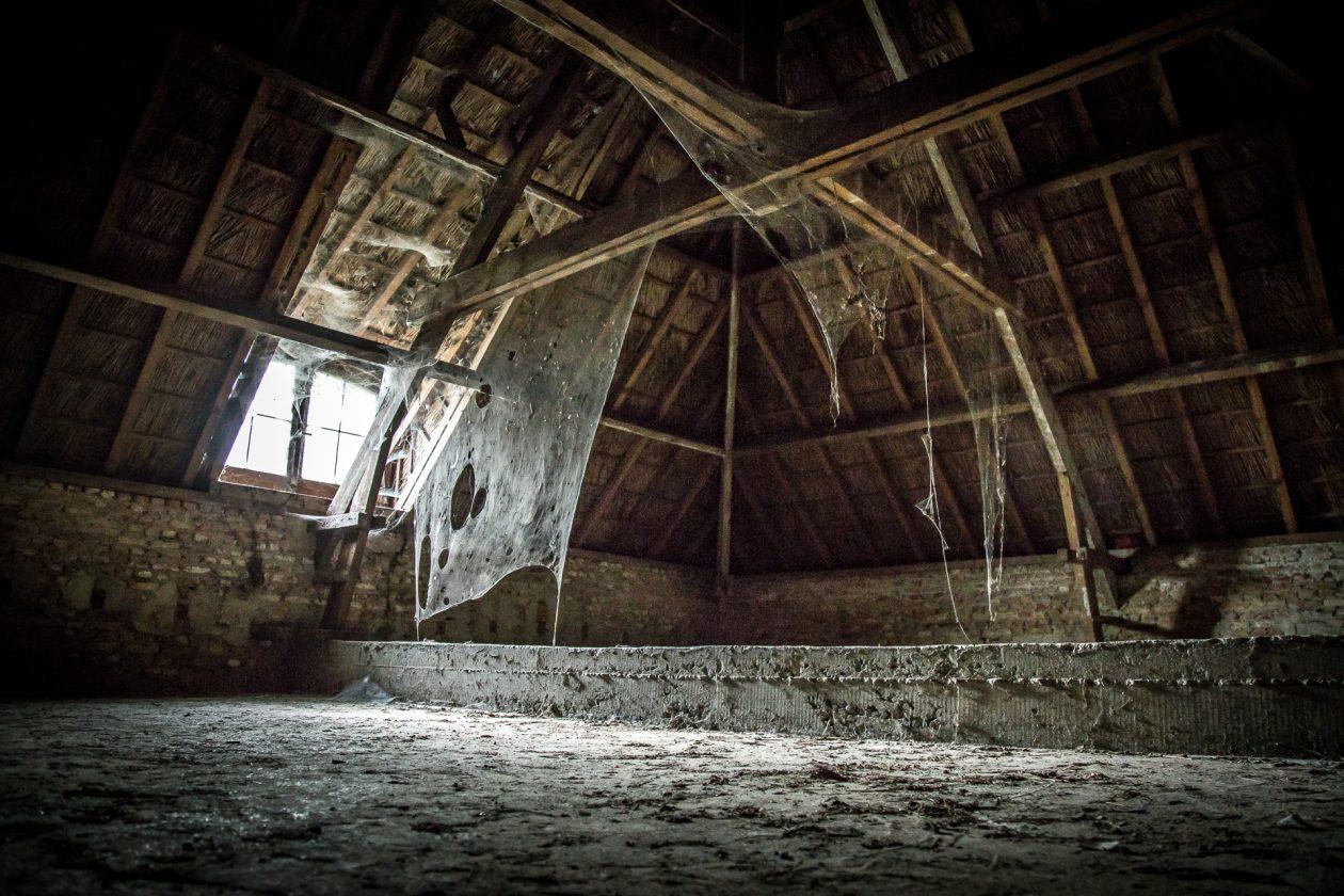 Spinnweben auf dem Dachboden