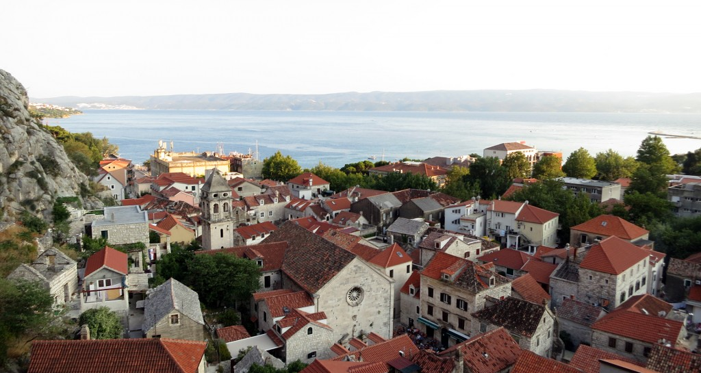 Omis_View