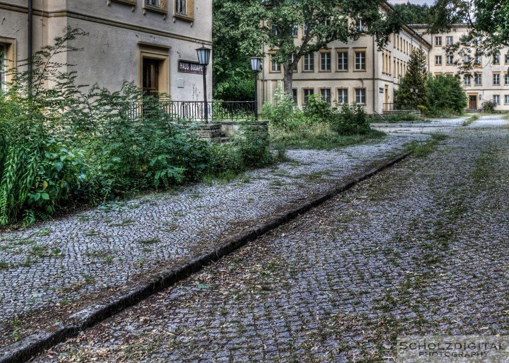 Bogensee bei Berlin