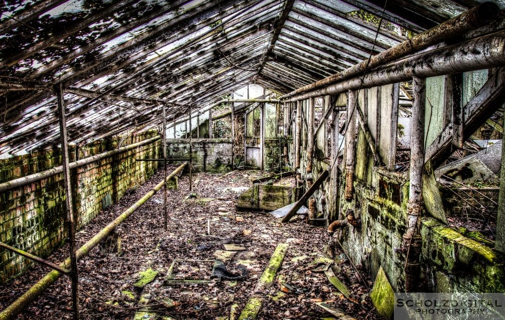 Lost Place - Gewächshaus