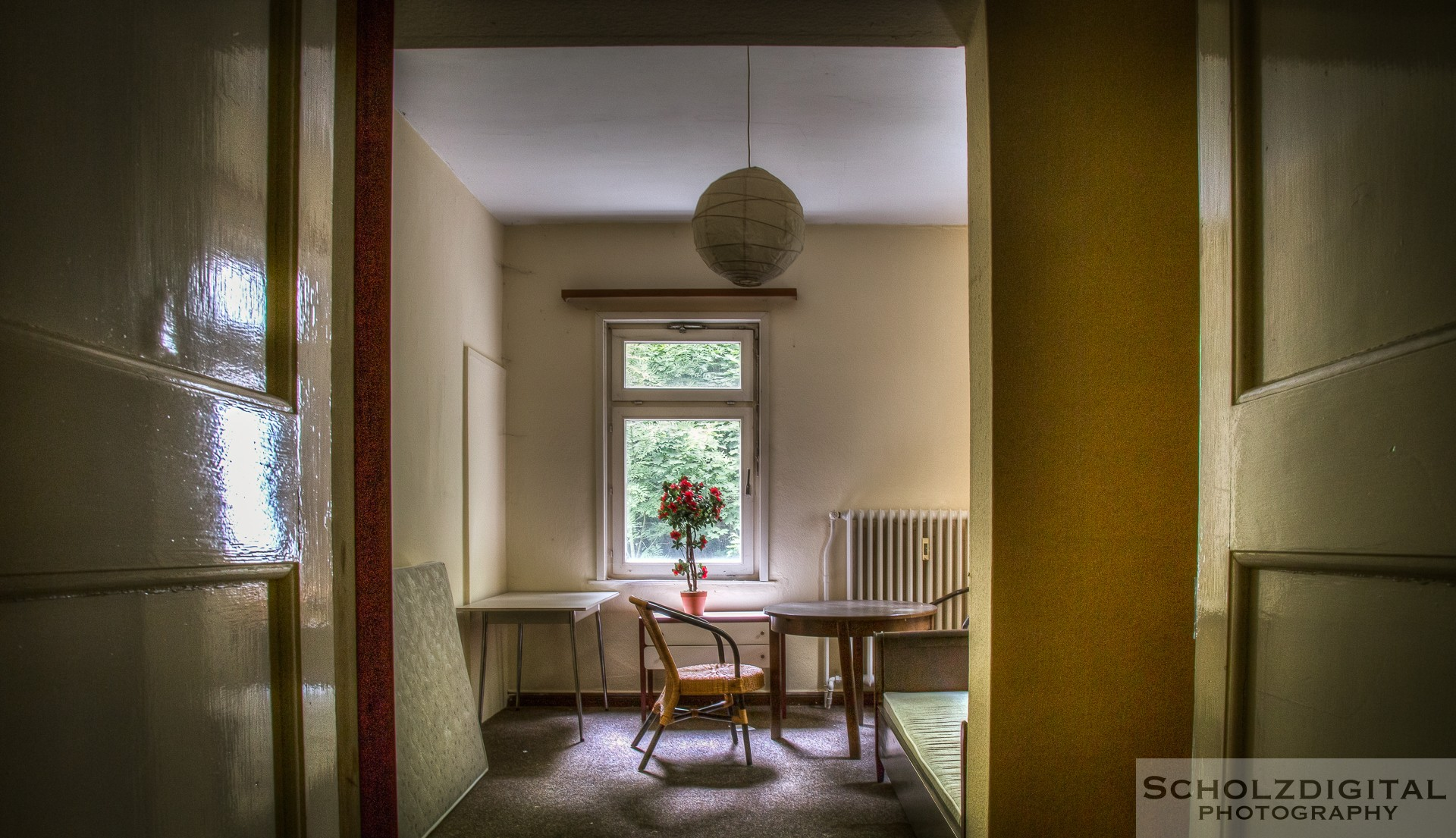 Haus_der_Anatomie-19