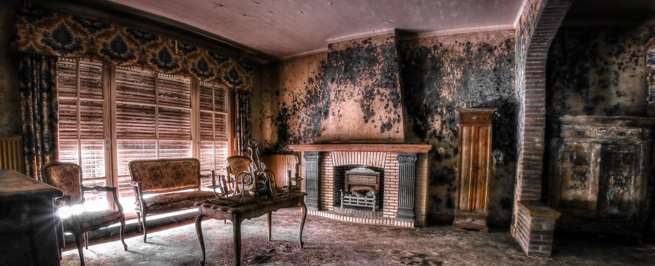 Maison Francine aka Mold house 2 Lost Place belgien