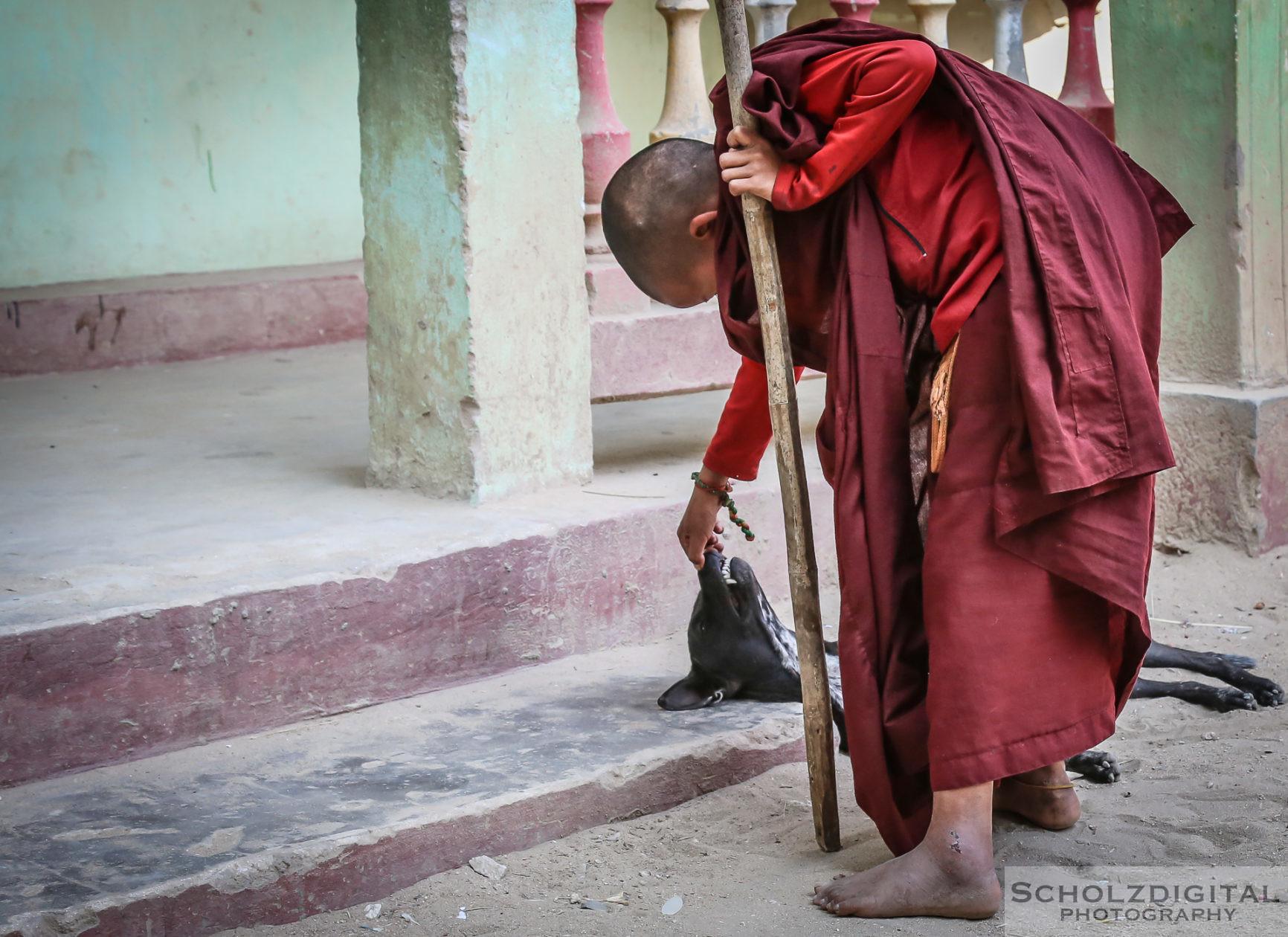 Birma, Buddah, Burma, Exploring, Monastery, Mönche, Myanmar, Nonnen, Travelling, Explorer, Scholzdigital, Southeastasia, Streetphotography, Travel, Travelling, travelphotography, Wanderlust