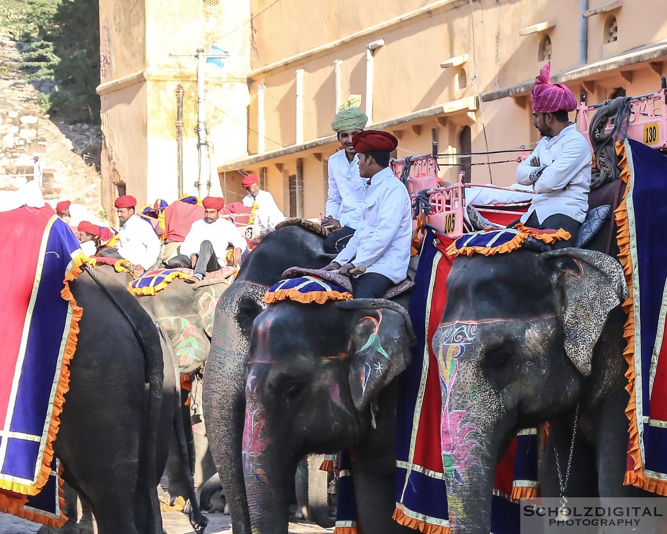 Amber Fort, Elefanten, Fürstenpalast, India, Indien, Jaipur, Rajasthan, Rundreise, India