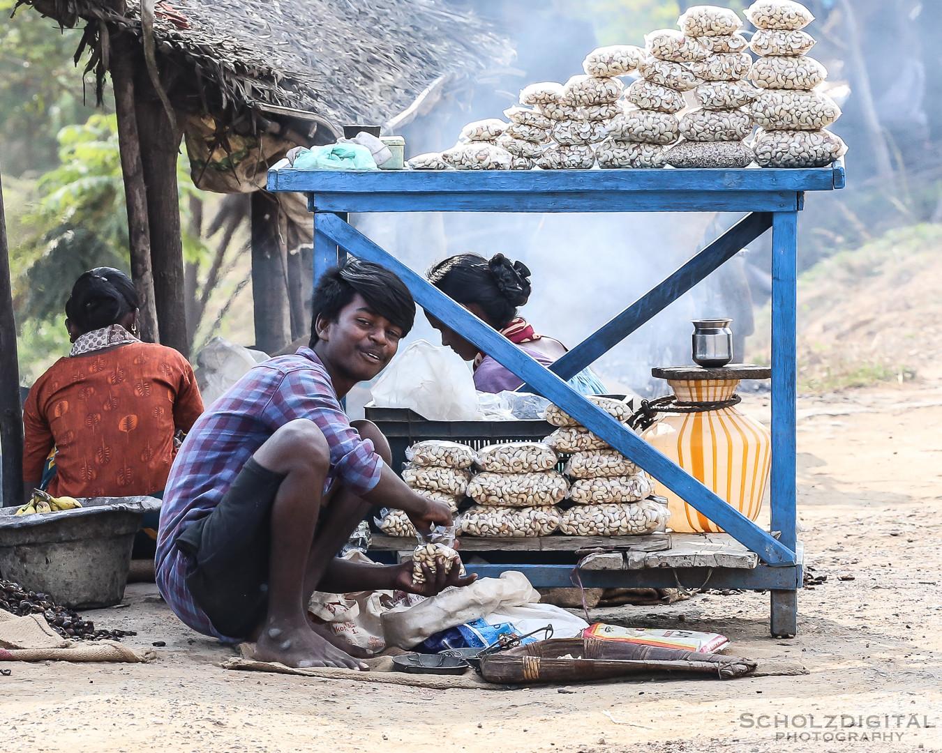 Cashew, Tamil Nadu, Indien, Rundreise