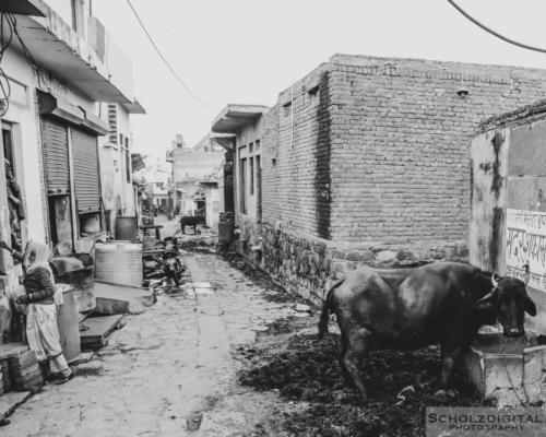 Streets of Karauli